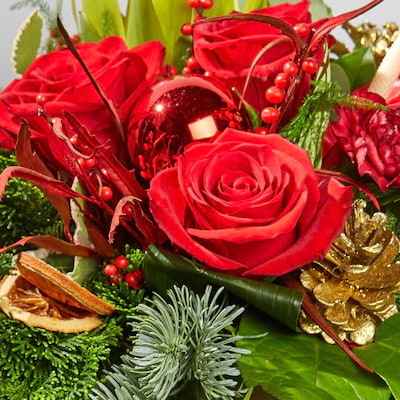 Bloom Magic - Rudolph Gift Set