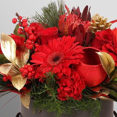 Bloom Magic - Vixen Gift Set