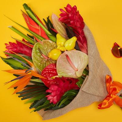 Bloom Magic - Huntington's Breeze