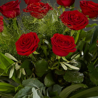 Bloom Magic - Flower Delivery Ireland - What's more special than receiving the classic gift of one dozen luxurious roses? Long stemmed Grade A roses, expertly hand-tied and gift wrapped are sure to make your special someone feel amazing.